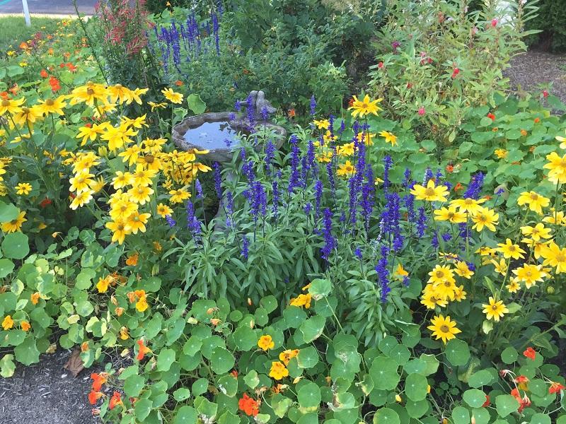 historic flower garden design