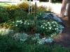 flower-garden-summer