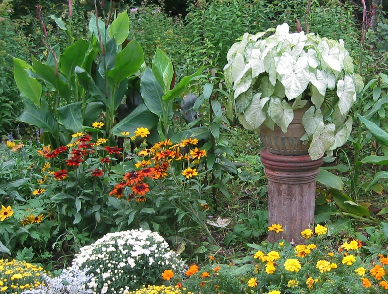 2_foliage_container