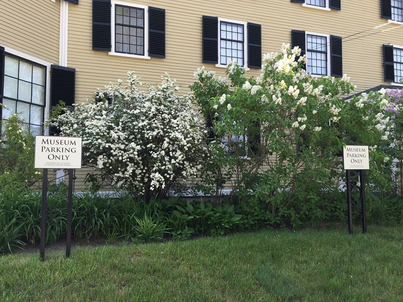 historic garden design with heirloom  shrubs