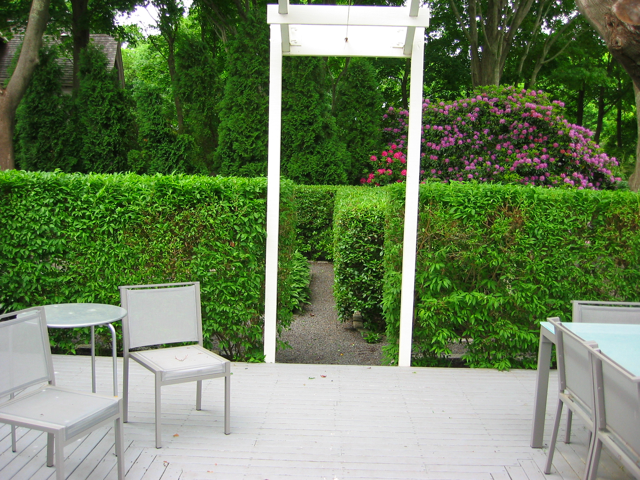 pruning-deck-hedge-after