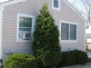 foundation-planting-pruning