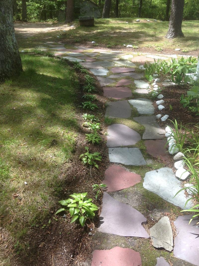 hosta-path