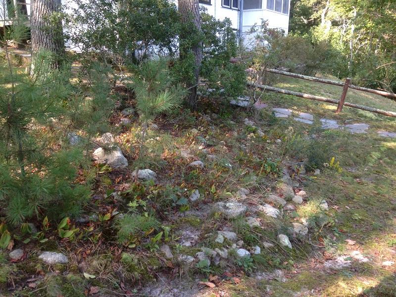 rock-garden-before