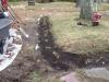 hosta-walk-planting