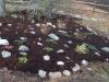 new-rock-garden